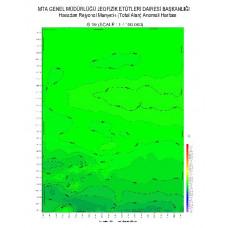 G 19 paftası 1/100.000 ölçekli Havadan Rejyonal Manyetik Haritası