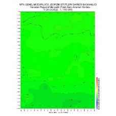 H 24 paftası 1/100.000 ölçekli Havadan Rejyonal Manyetik Haritası