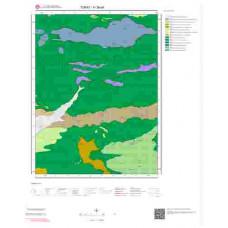 H 38-d4 Paftası 1/25.000 ölçekli Jeoloji Haritası