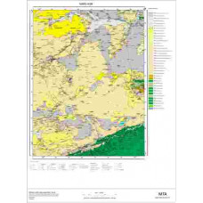 H49 Paftası 1/100.000 Ölçekli Vektör Jeoloji Haritası